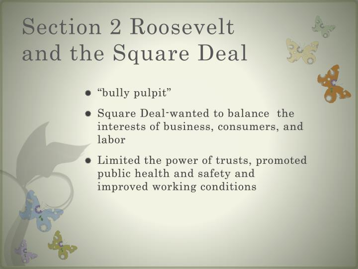 Section 2 Roosevelt and the Square Deal