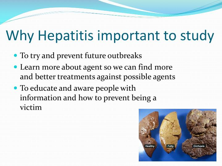 Why Hepatitis important to study