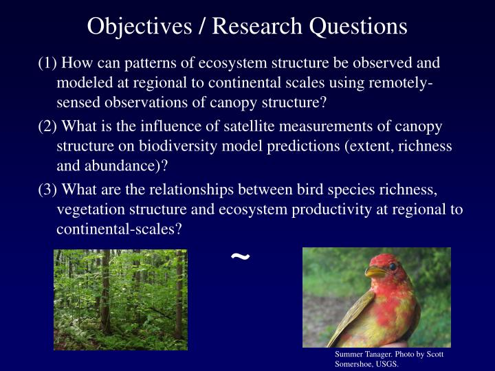 Objectives / Research Questions