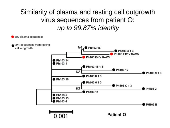 Similarity of plasma and resting cell outgrowth virus sequences from patient O: