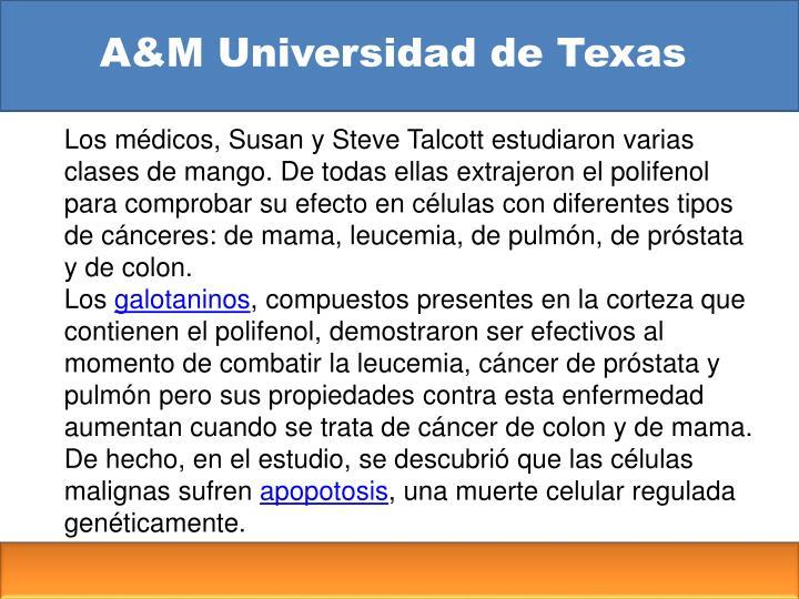 A&M Universidad de Texas