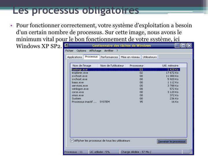 Pour fonctionner correctement, votre systme d'exploitation a besoin d'un certain nombre de processus. Sur cette image, nous avons le minimum vital pour le bon fonctionnement de votre systme, ici Windows XP SP2.