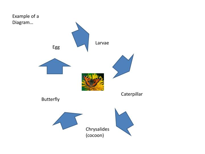 Example of a Diagram…