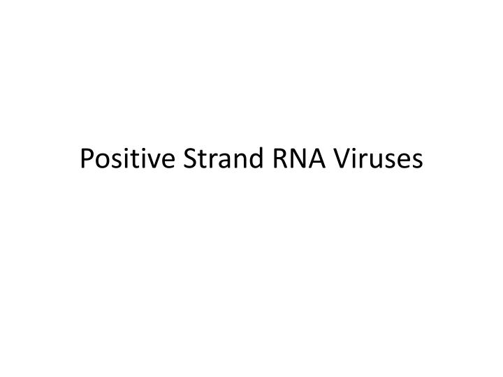 Positive Strand RNA Viruses
