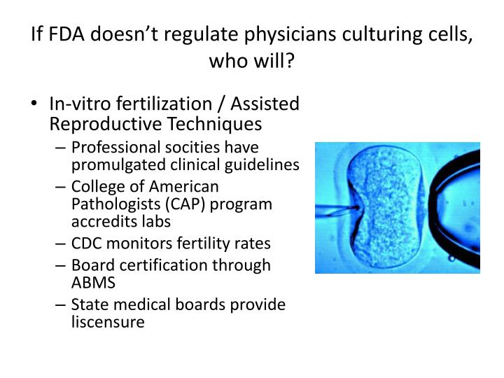 If FDA doesn't regulate physicians culturing cells, who will?