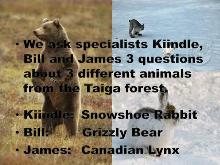 We ask specialists Kiindle, Bill and James 3 questions about 3 different animals from the