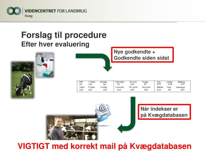 Forslag til procedure