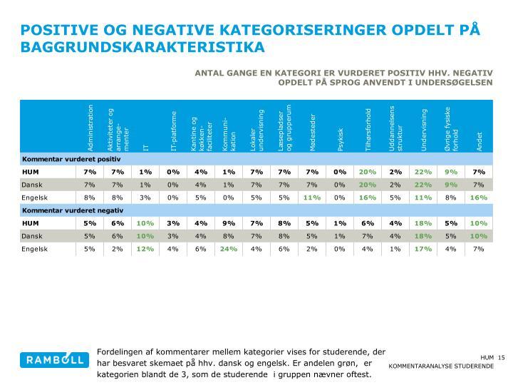 Positive og negative kategoriseringer opdelt på baggrundskarakteristika