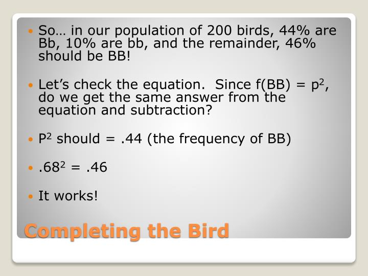 So… in our population of 200 birds, 44% are Bb, 10% are bb, and the remainder, 46% should be BB!