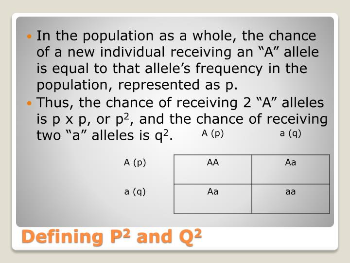 "In the population as a whole, the chance of a new individual receiving an ""A"" allele is equal to that allele's frequency in the population, represented as p."