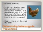 determining heterozygote frequencies