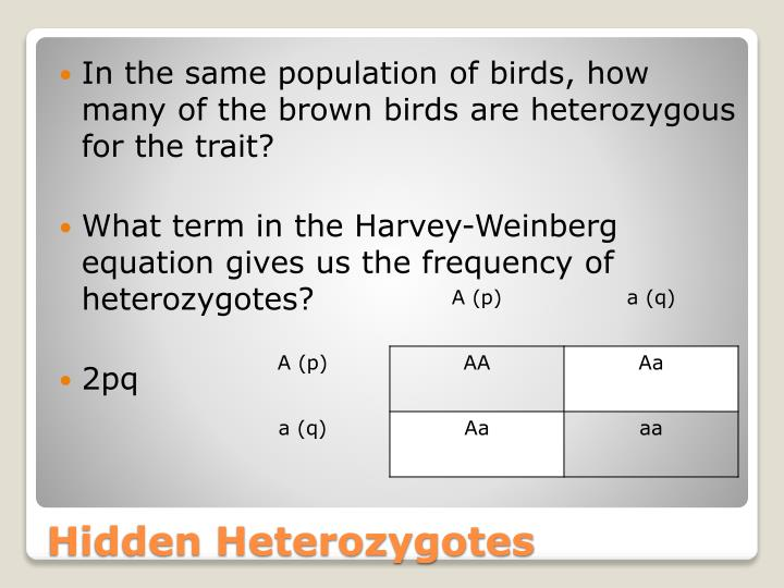 In the same population of birds, how many of the brown birds are heterozygous for the trait?
