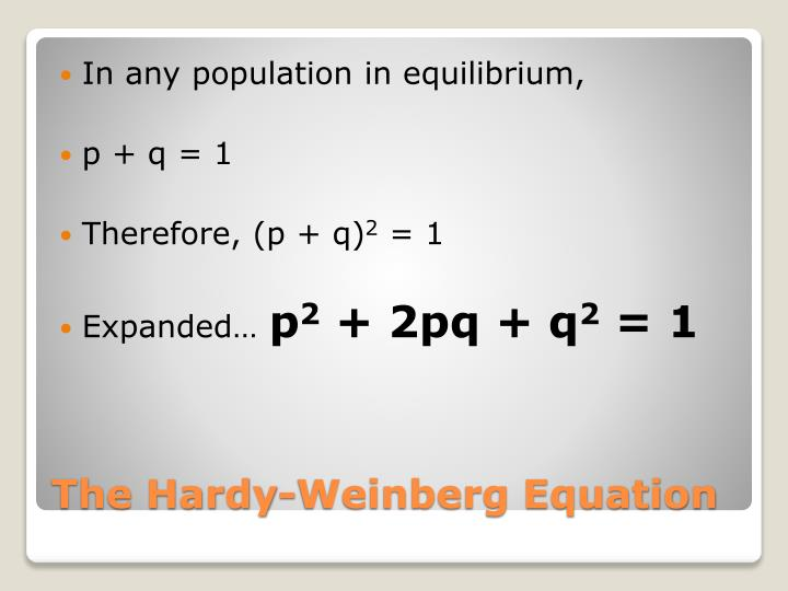In any population in equilibrium,