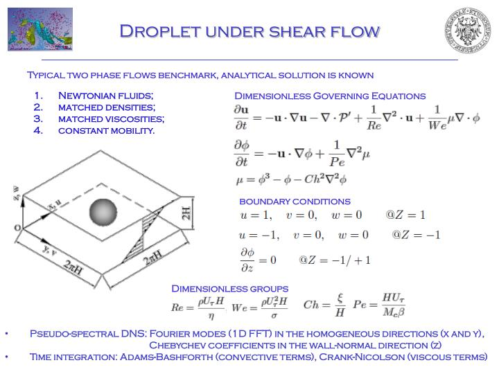 Droplet under shear flow