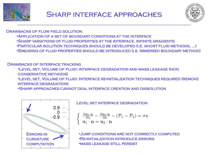 Sharp interface approaches