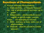reactions of photosynthesis10