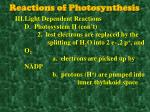 reactions of photosynthesis5
