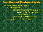 reactions of photosynthesis6