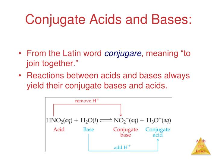 Conjugate Acids and Bases: