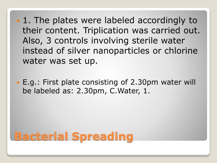 1. The plates were labeled accordingly to their content. Triplication was carried out. Also, 3 controls involving sterile water instead of silver nanoparticles or chlorine water was set up.