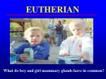 eutherian3