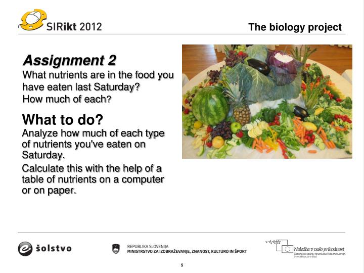The biology project