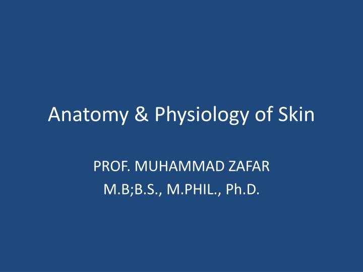 Anatomy & Physiology of Skin