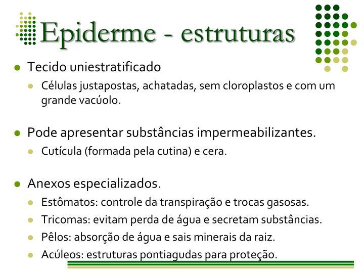 Epiderme - estruturas