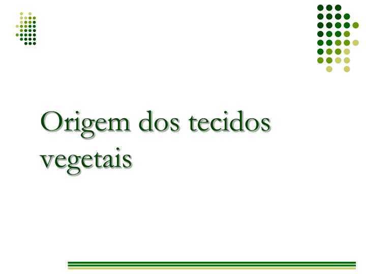 Origem dos tecidos vegetais