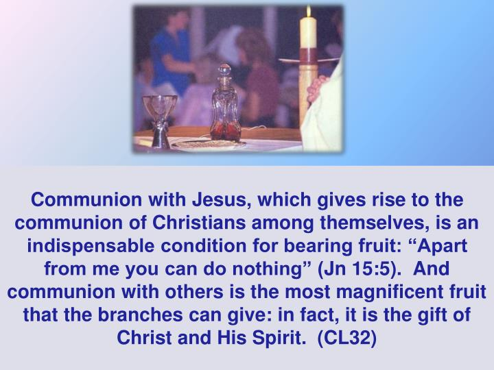 "Communion with Jesus, which gives rise to the communion of Christians among themselves, is an indispensable condition for bearing fruit: ""Apart from me you can do nothing"" ("
