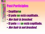 past participles6