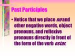 past participles7