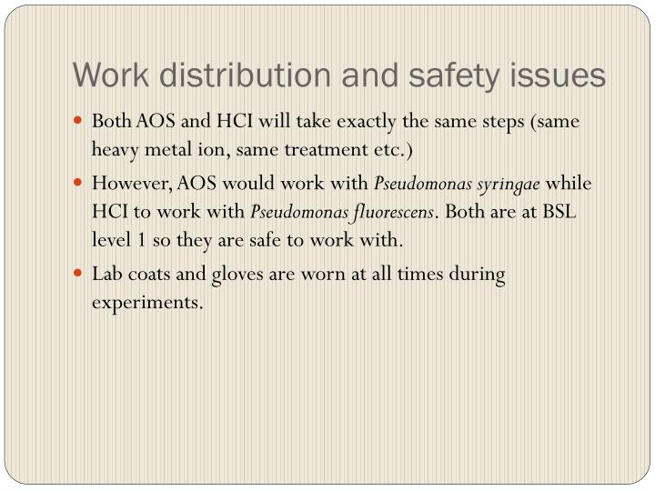 Work distribution and safety issues