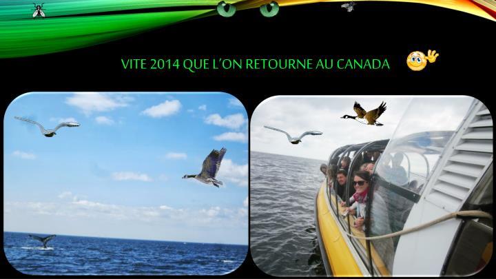 Vite 2014 que l'on retourne au Canada