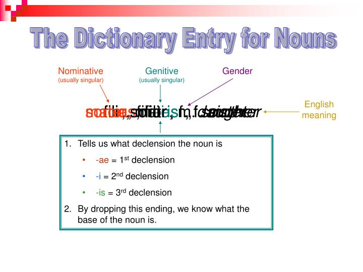 The Dictionary Entry for Nouns