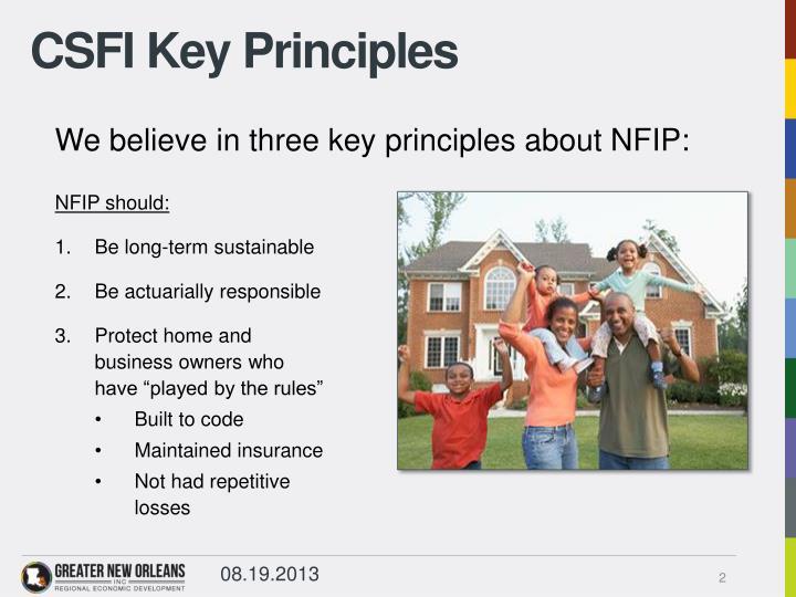 CSFI Key Principles