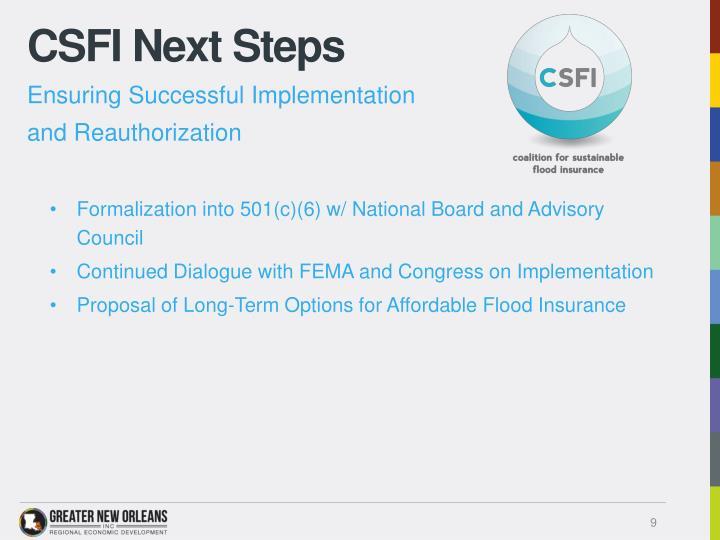 CSFI Next Steps