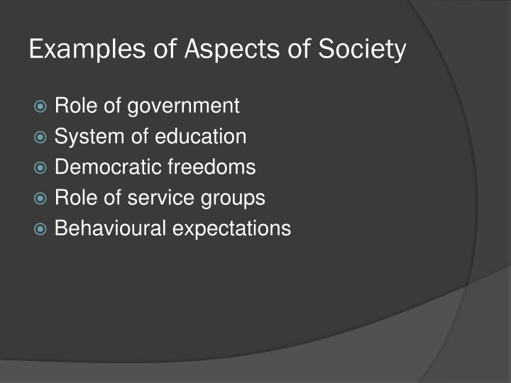 Examples of Aspects of Society