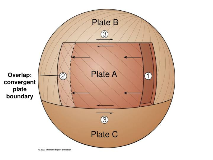 Plate B