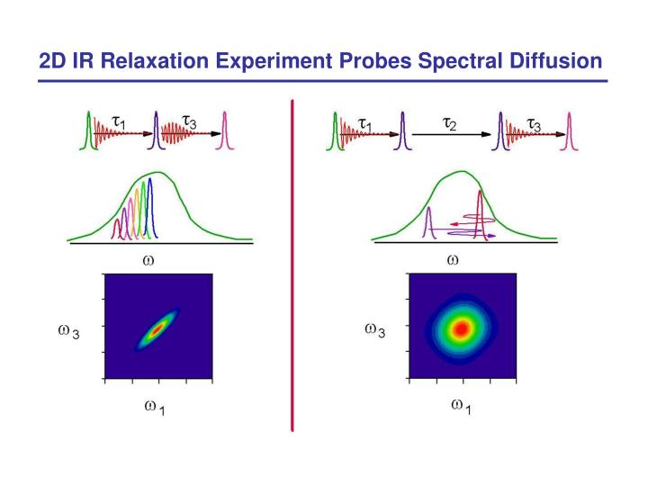 2D IR Relaxation Experiment Probes Spectral Diffusion
