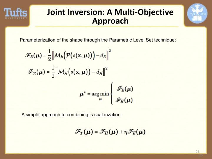 Joint Inversion: A Multi-Objective Approach