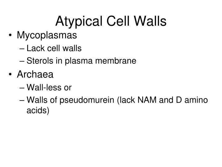 Atypical Cell Walls