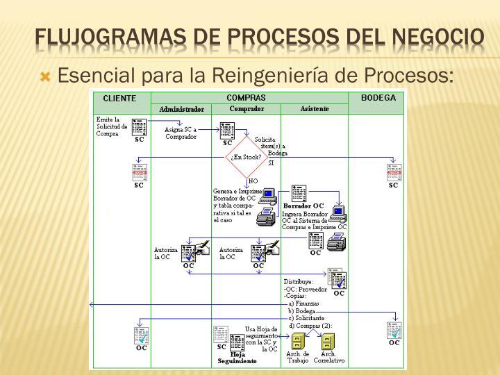 Esencial para la Reingeniería de Procesos