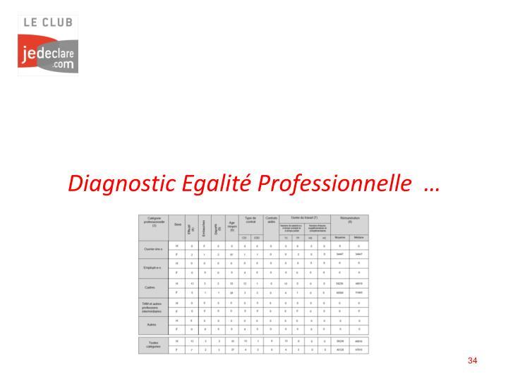Diagnostic Egalité Professionnelle  …