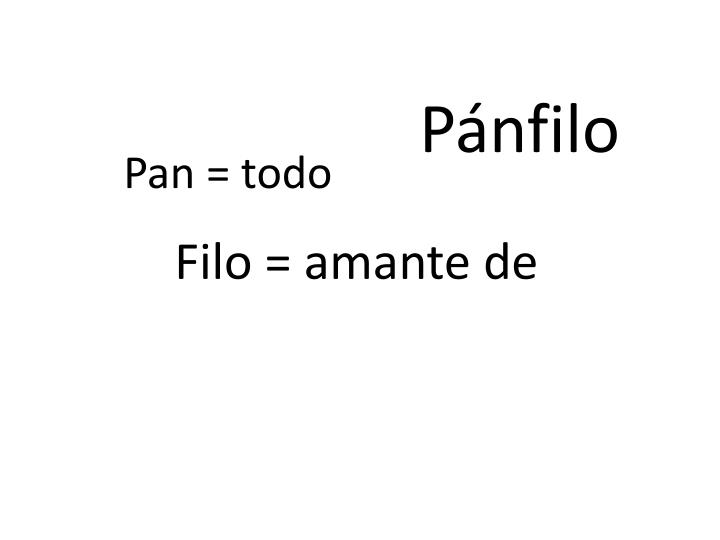 Pnfilo