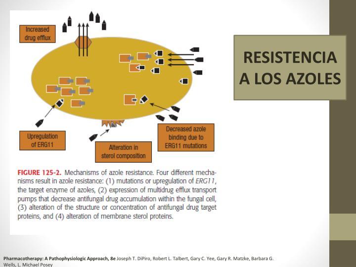 RESISTENCIA A LOS AZOLES