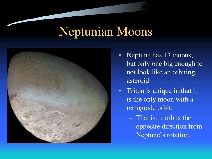 Neptunian Moons