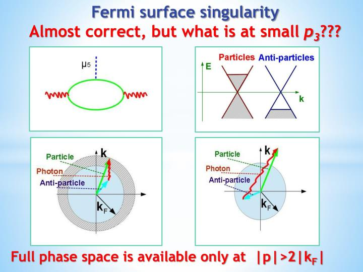 Fermi surface singularity