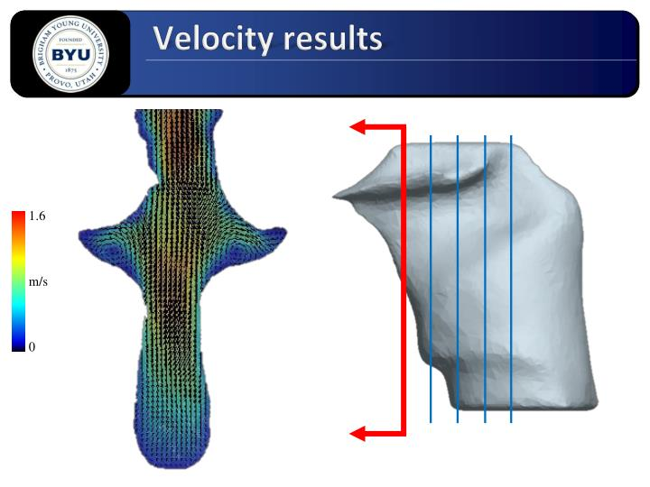 Velocity results