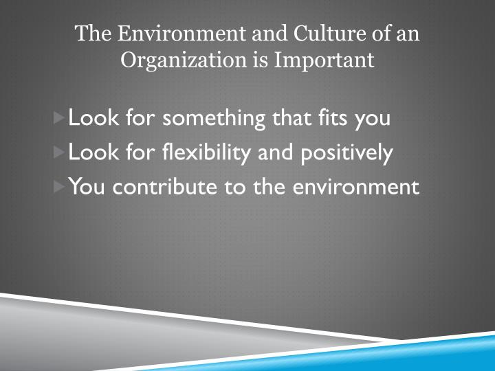The Environment and Culture of an Organization is Important